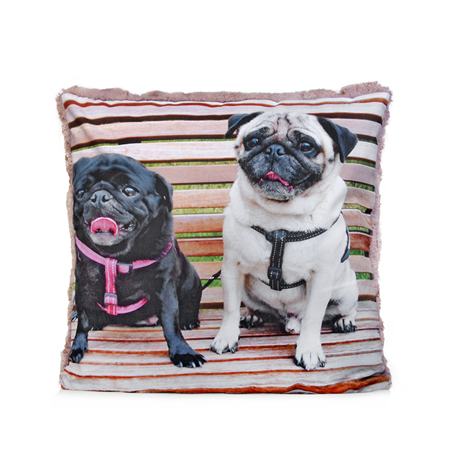 Custom Pet Photo Cushions - Keepsakes of Love