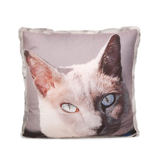 Pet Photo Pillow