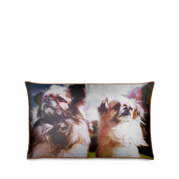 Photo Pillowcases & Cushions