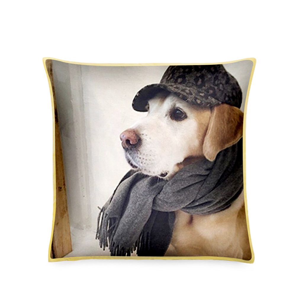 Pet Photo Pillow