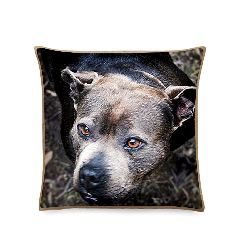 Custom Pet Photo Cushions