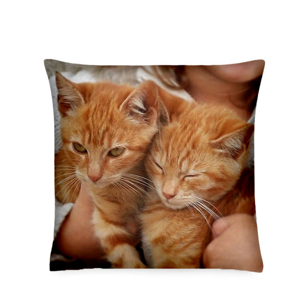 Custom Photo Printed Pillow
