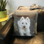 Pet Memorial - West Highland White Terrier