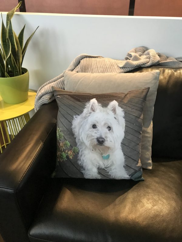 Pet Memorial - West Highland White Terrier